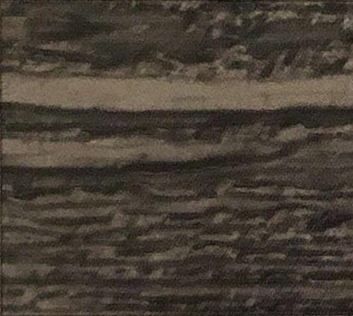 Black Hills Lap Siding Color